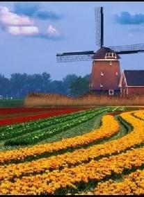 2020.08.17-08.23. 7nap/6éj Benelux körút - sajt, tulipán, fapapucs